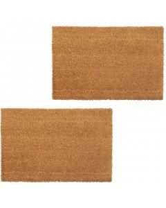 Doormats 2 Pcs Coir 17 Mm 50x80 Cm Natural